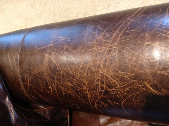 How to Remove Scratches from Leather Sofa | Leather-Sofa.org