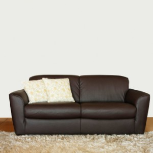 8 Top Leather Sofa Cleaners | Leather-Sofa.org